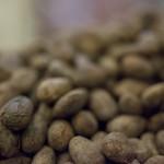 IMG_9849-cacaobonen